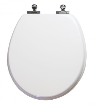 Round White Slow Close Toilet Seat