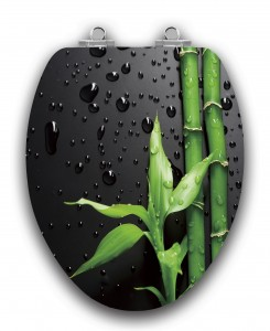 Glossy Black with Green Bamboo and Raindrops