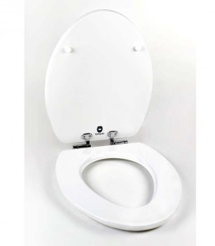 white toilet seat open